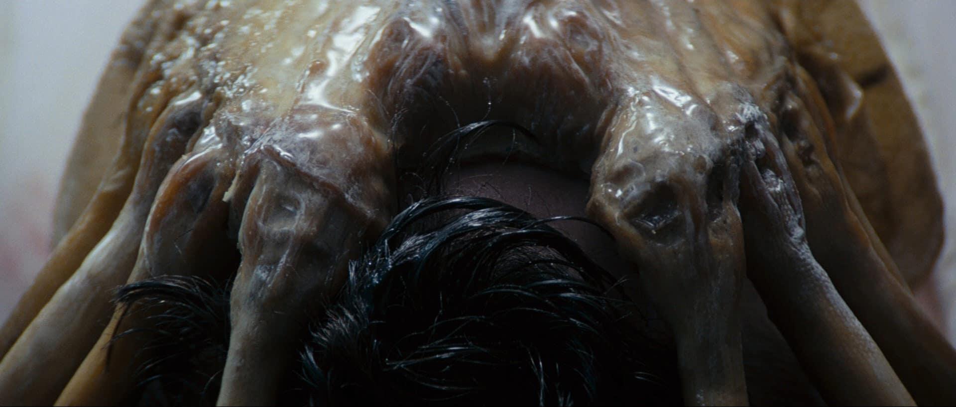 Gwen Callahan's Top 25 Horror Movies