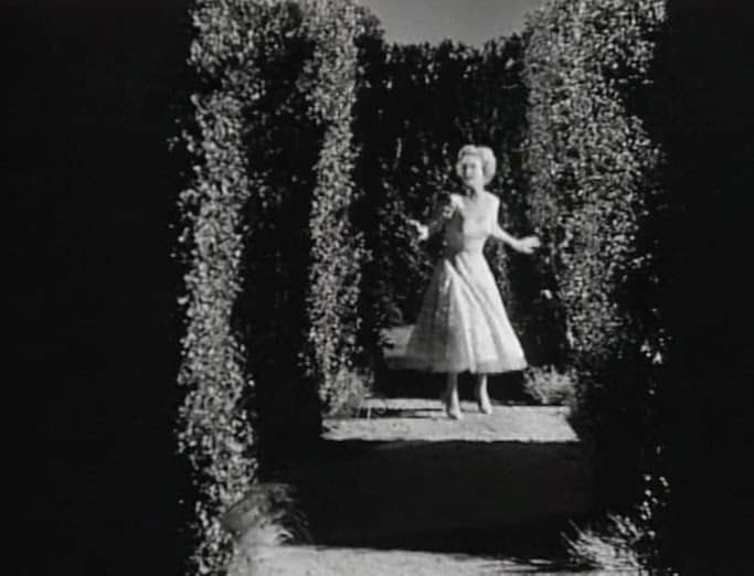 Robert's Review: The Maze (1953)