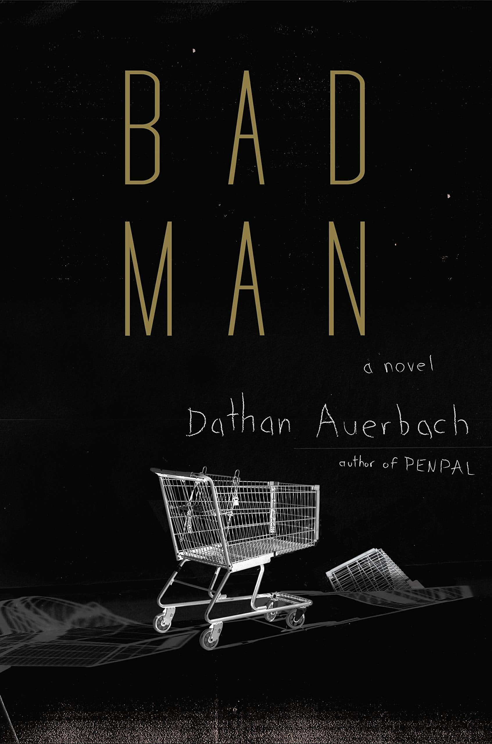 Liz's Book Report: Bad Man