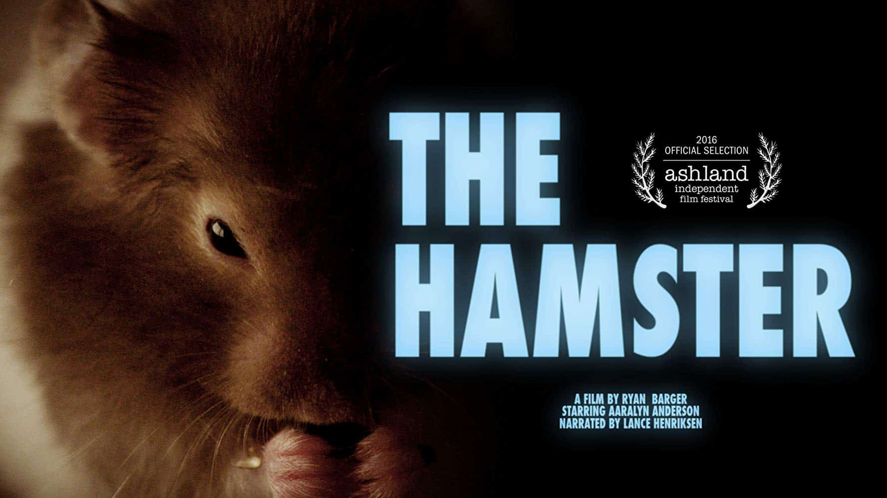 """Horror"" Short: The Hamster (2016)"