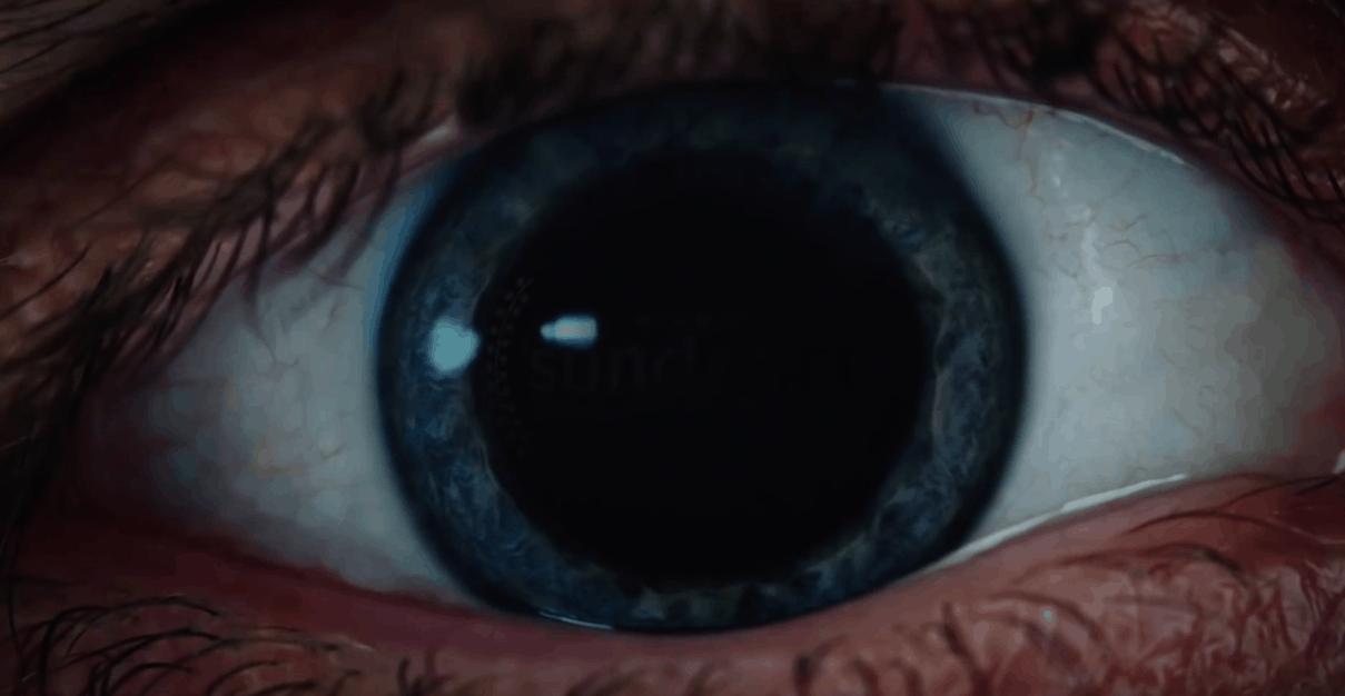 Horror Movie News: Velvet Buzzsaw Coming Soon